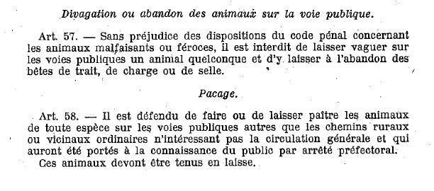 divaguation-loi-1922.jpg