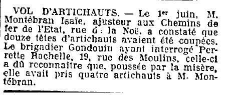 vol-artichaut-7-06-1923oe.jpg